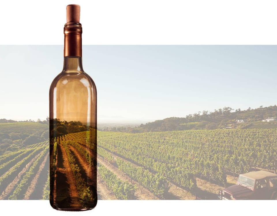 bottle of wine over a field